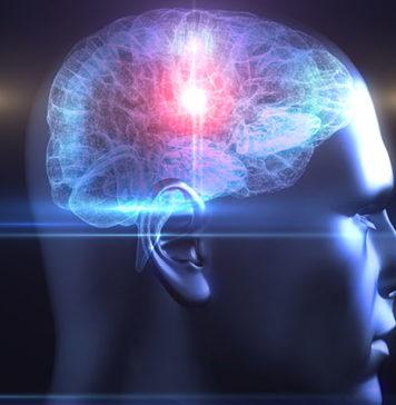 Εκπαιδεύστε εγκέφαλό