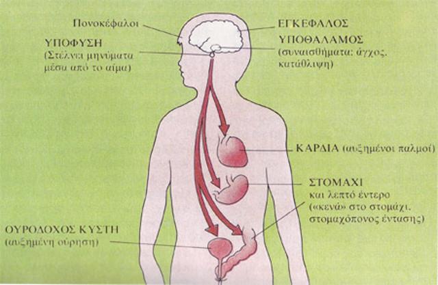 Ψυχοσωματικά